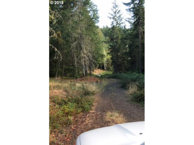 Bennett Creek, Cottage Grove, OR 97424 (MLS #18063896) :: Harpole Homes Oregon