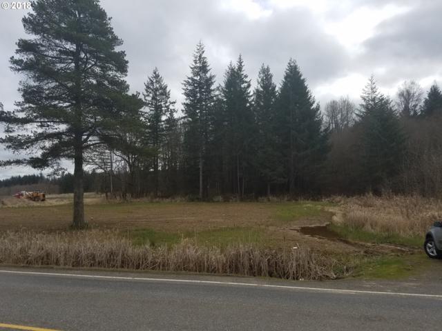 682 Forest Napavine Rd, Napavine, WA 98565 (MLS #18078692) :: Team Zebrowski