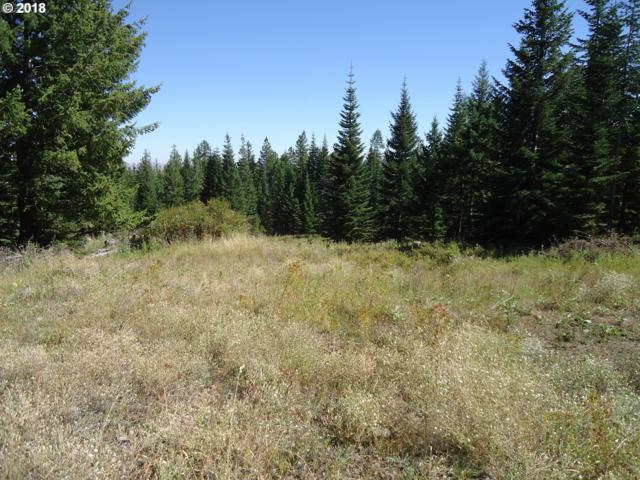 0 Lime Quarry, Enterprise, OR 97828 (MLS #18084769) :: Team Zebrowski