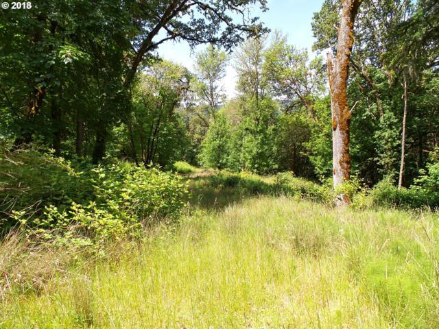 272 Deer Fern Way, Roseburg, OR 97470 (MLS #18092121) :: Realty Edge