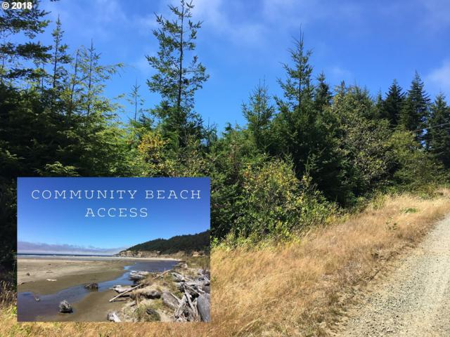 0 Sacchi Dr, Bandon, OR 97411 (MLS #18097394) :: Stellar Realty Northwest