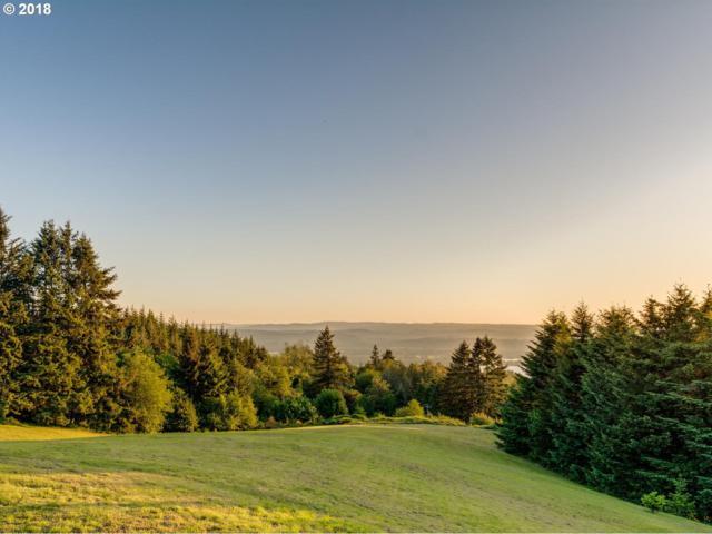 5236 Green Mountain Rd, Kalama, WA 98625 (MLS #18099779) :: R&R Properties of Eugene LLC