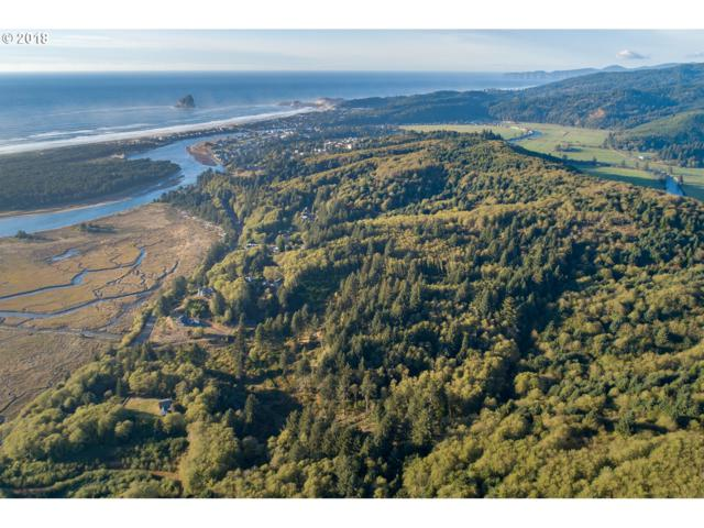 502 Brooten Hill Tl, Pacific City, OR 97135 (MLS #18106064) :: Portland Lifestyle Team