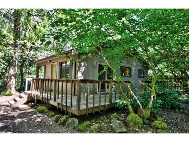 65601 E Alpine Way, Rhododendron, OR 97049 (MLS #18115181) :: The Dale Chumbley Group
