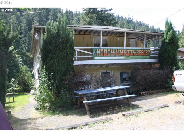23885 North Umpqua Hwy, Idleyld Park, OR 97447 (MLS #18134883) :: Hatch Homes Group