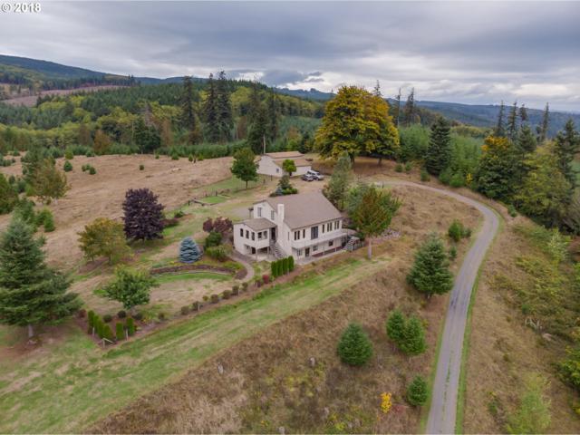 6659 Westside Hwy, Castle Rock, WA 98611 (MLS #18140972) :: Matin Real Estate