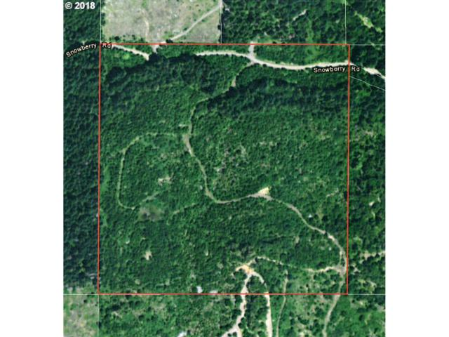 0 Snowberry Rd, Roseburg, OR 97471 (MLS #18144193) :: Keller Williams Realty Umpqua Valley