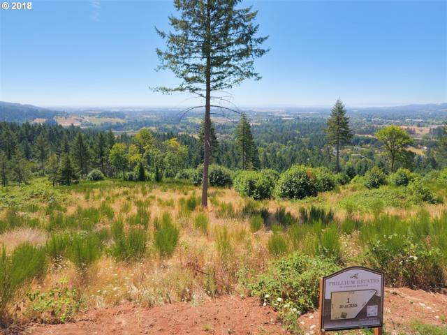 30580 NE Bell Rd, Newberg, OR 97132 (MLS #18144489) :: Next Home Realty Connection