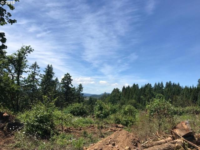 Wallace Creek Rd One, Pleasant Hill, OR 97455 (MLS #18149500) :: R&R Properties of Eugene LLC
