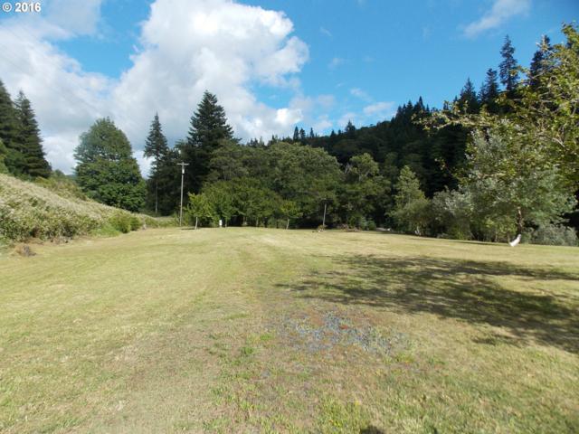 17260 Hwy 42, Myrtle Point, OR 97458 (MLS #18159717) :: TLK Group Properties
