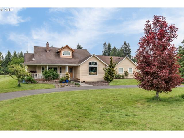 17819 NE 167TH Ave, Brush Prairie, WA 98606 (MLS #18161110) :: The Dale Chumbley Group