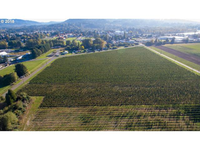 909 Caples Rd, Woodland, WA 98674 (MLS #18170002) :: Townsend Jarvis Group Real Estate