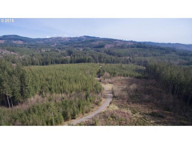 2 Boulder Creek Rd, Camas, WA 98607 (MLS #18170280) :: The Dale Chumbley Group
