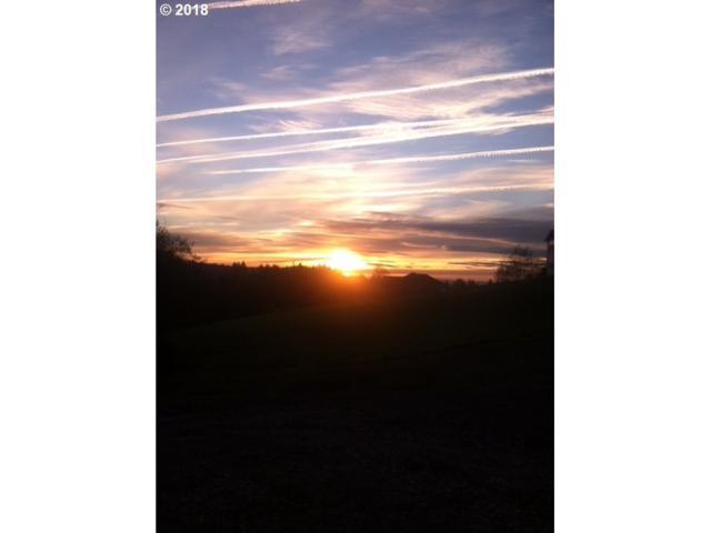 0 Green Mountain Lot 2 Rd, Woodland, WA 98674 (MLS #18175936) :: Premiere Property Group LLC