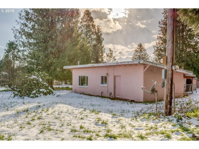 6204 SE Hans Nagel Rd, Washougal, WA 98671 (MLS #18176085) :: The Sadle Home Selling Team