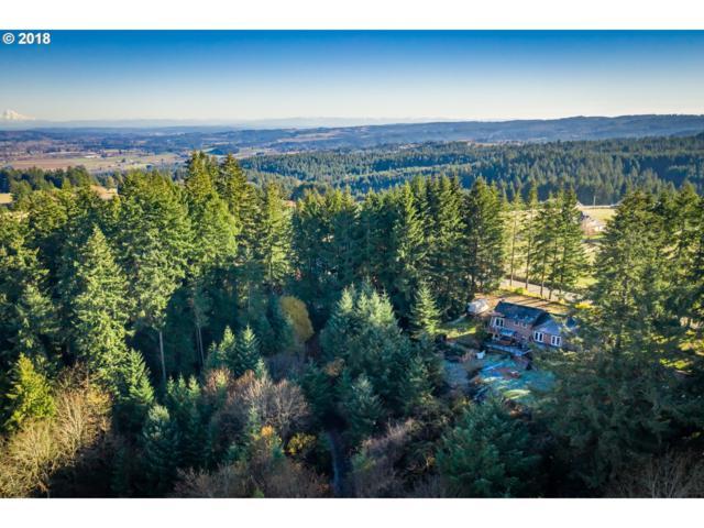 34835 SW Bald Peak Rd, Hillsboro, OR 97123 (MLS #18183787) :: Matin Real Estate