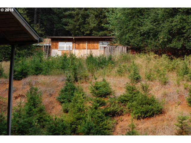 95118 Hazel Ln, Marcola, OR 97454 (MLS #18189152) :: Territory Home Group