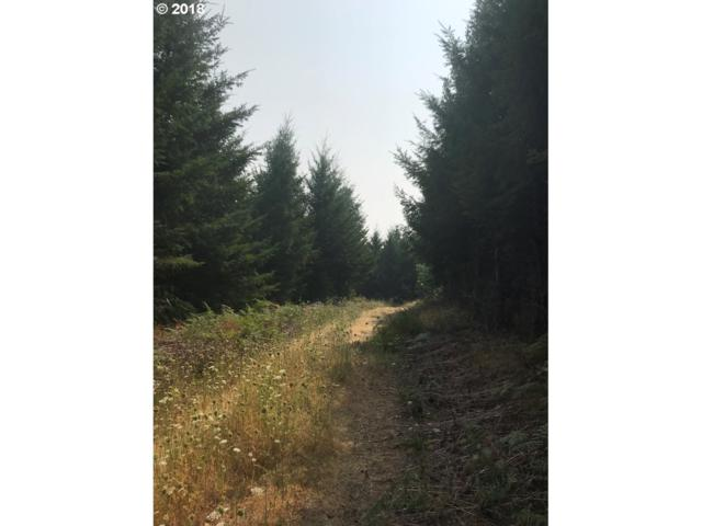 High Pass Rd, Junction City, OR 97448 (MLS #18190869) :: Harpole Homes Oregon