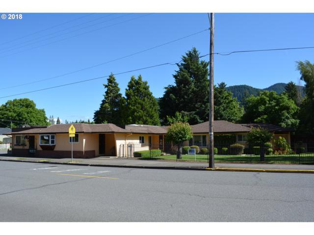 48074 E 1ST St, Oakridge, OR 97463 (MLS #18213235) :: Song Real Estate