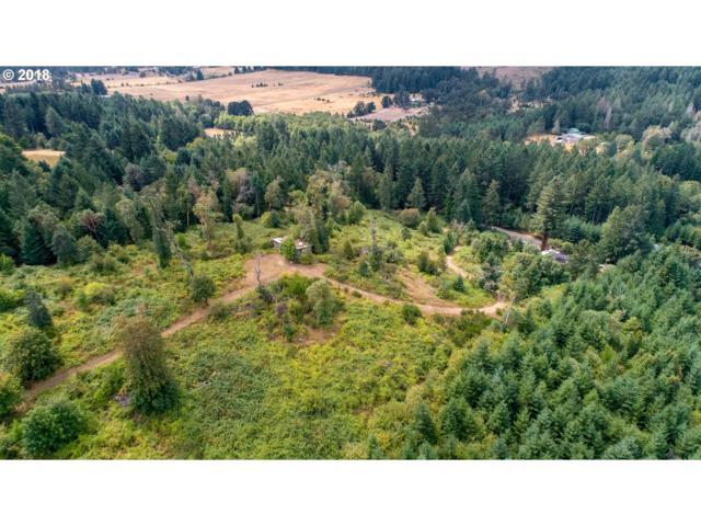 -1 Demming Rd, Elmira, OR 97437 (MLS #18217786) :: R&R Properties of Eugene LLC