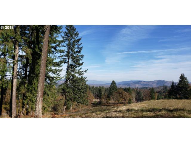 Spring Blvd, Eugene, OR 97401 (MLS #18219681) :: Song Real Estate