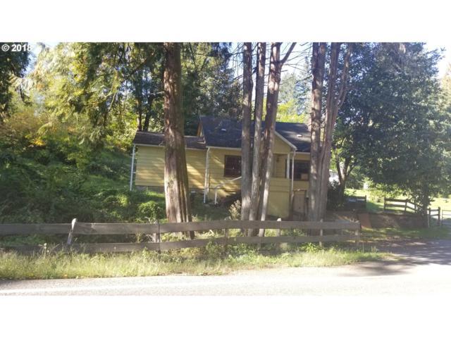 3841 Westside Hwy, Castle Rock, WA 98611 (MLS #18224703) :: Hatch Homes Group