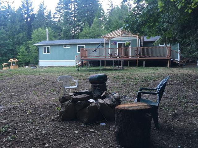 49959 Mckenzie Hwy, Vida, OR 97488 (MLS #18230307) :: Hatch Homes Group
