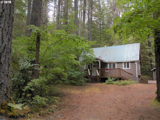 134 Northwoods, Cougar, WA 98616 (MLS #18230333) :: Matin Real Estate
