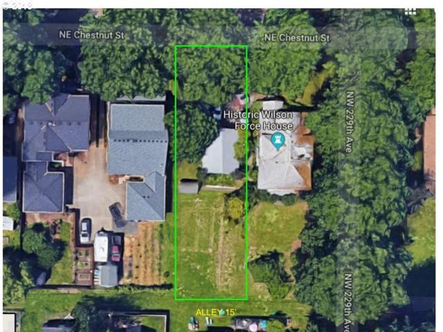6650 NE Chestnut St, Hillsboro, OR 97124 (MLS #18236598) :: TLK Group Properties