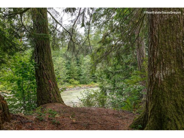 64680 E Sandy River Ln #218, Rhododendron, OR 97049 (MLS #18247084) :: The Dale Chumbley Group