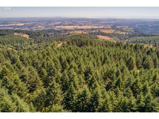 0 Melott Rd, Hillsboro, OR 97123 (MLS #18250792) :: Fox Real Estate Group