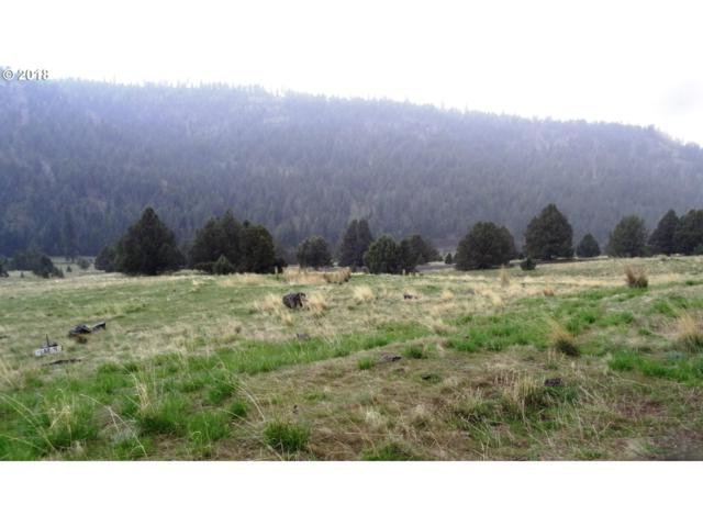 0 Fayes Dr, Long Creek, OR 97856 (MLS #18251658) :: Realty Edge