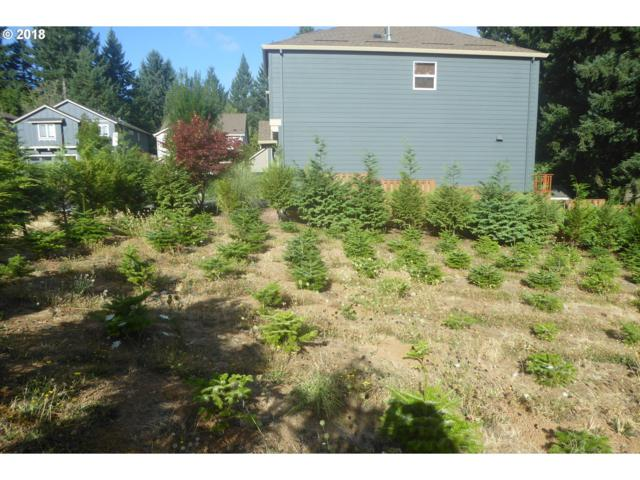 17551 SW Butterfly Ct, Beaverton, OR 97007 (MLS #18252871) :: Hatch Homes Group