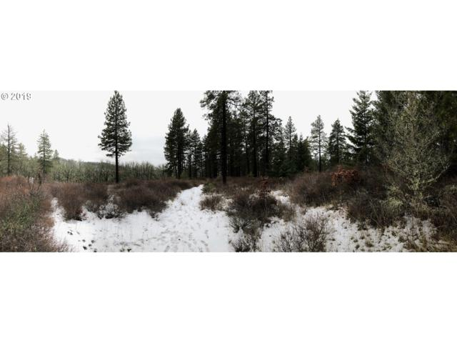 Vensel Road, Mosier, OR 97040 (MLS #18253527) :: Cano Real Estate