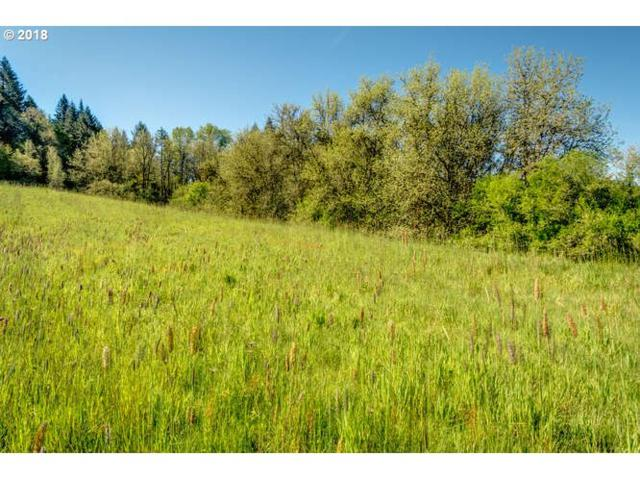 47130 SW South Rd, Gaston, OR 97119 (MLS #18258284) :: TLK Group Properties
