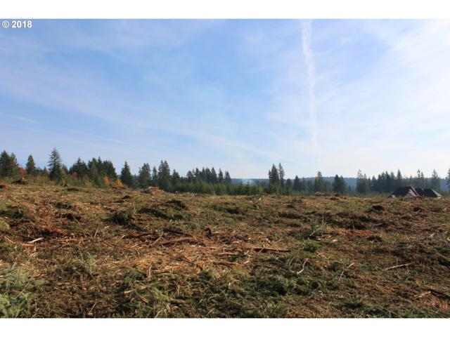 0 NE 221st Ct Lot14, Brush Prairie, WA 98606 (MLS #18270962) :: Gustavo Group