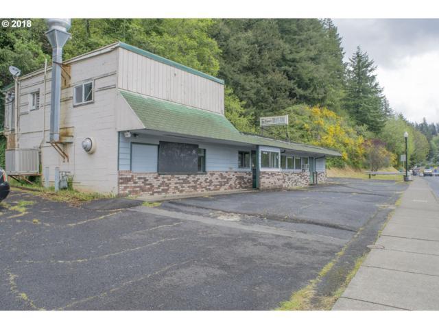580 W Hwy 20, Toledo, OR 97391 (MLS #18281054) :: Fox Real Estate Group
