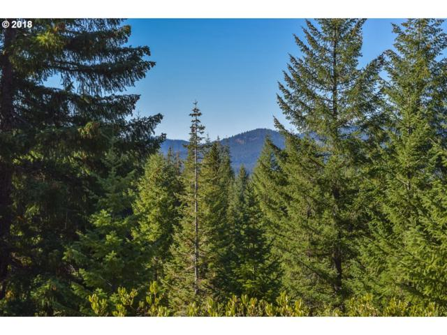 Highway 126 #301, Sweet Home, OR 97386 (MLS #18287266) :: Townsend Jarvis Group Real Estate