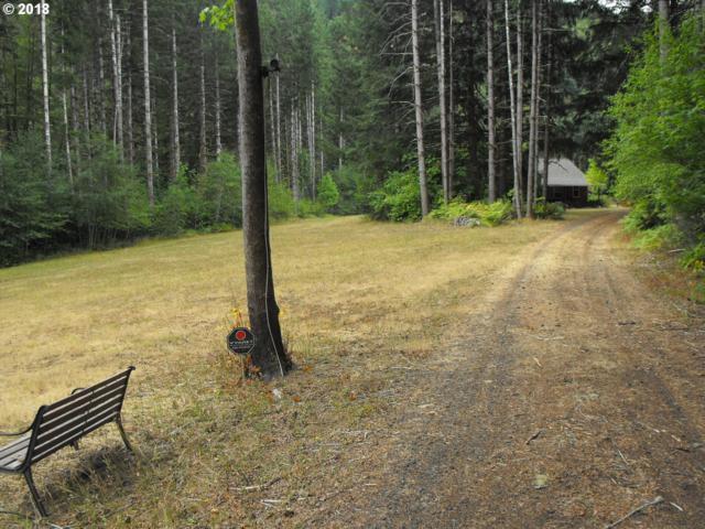 17980 Hwy 126, Mapleton, OR 97453 (MLS #18287581) :: Harpole Homes Oregon