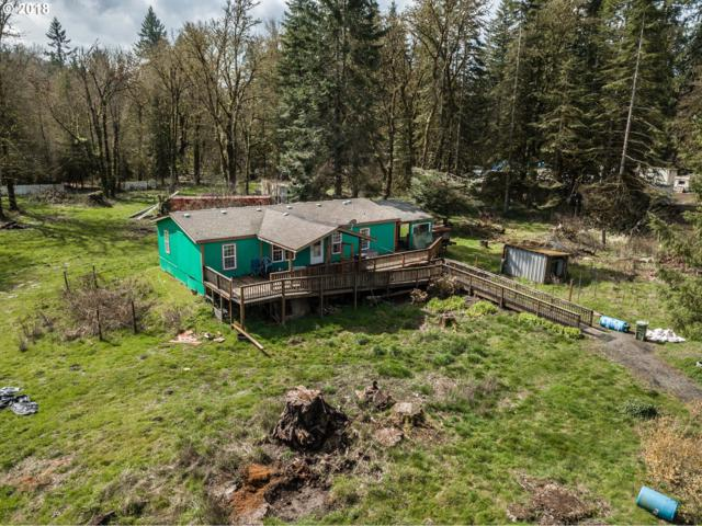 4105 NW Fir Tree Dr, Woodland, WA 98674 (MLS #18294732) :: Song Real Estate