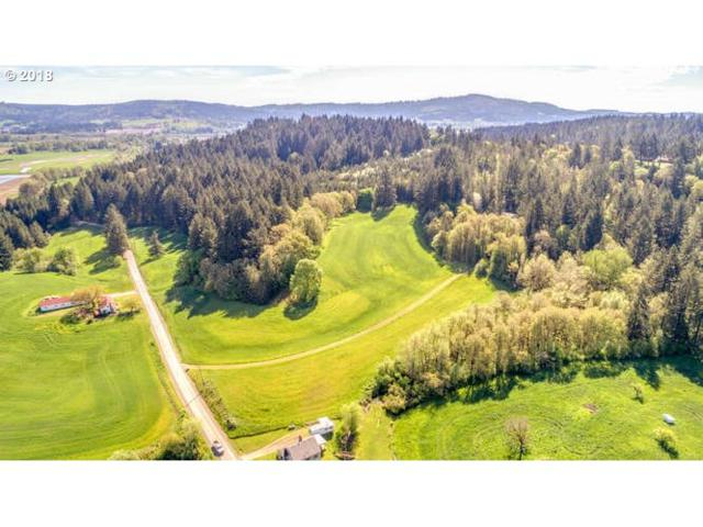 0 SW South Rd 1 & 2, Gaston, OR 97119 (MLS #18296127) :: TLK Group Properties