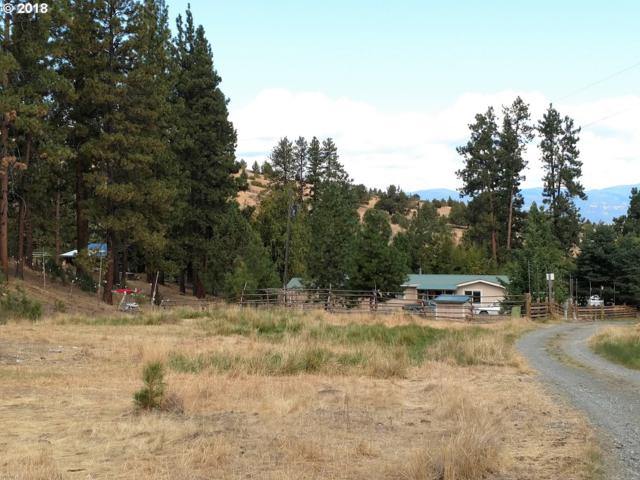 26048 Little Indian C Rd, John Day, OR 97845 (MLS #18303738) :: The Dale Chumbley Group