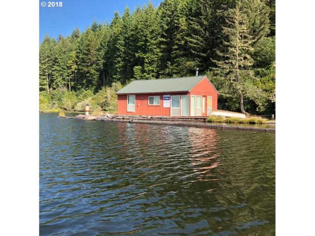Tahkenitch Lake, Westlake, OR 97493 (MLS #18304061) :: Harpole Homes Oregon