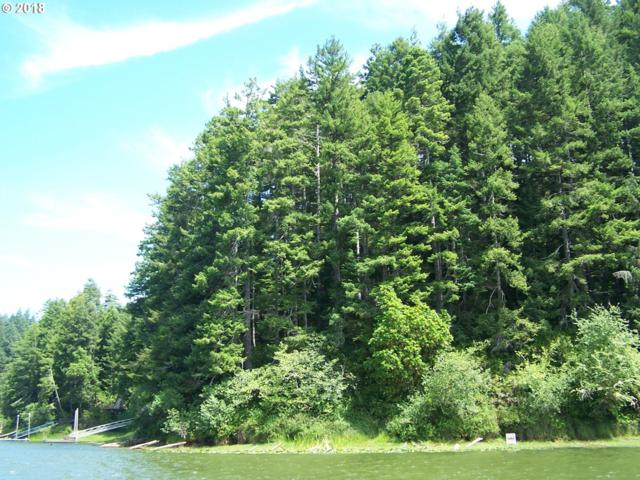0 N Tenmile Lake, Lakeside, OR 97449 (MLS #18312953) :: Fox Real Estate Group