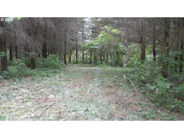 119 Snowgoose Dr, Woodland, WA 98674 (MLS #18315242) :: Keller Williams Realty Umpqua Valley