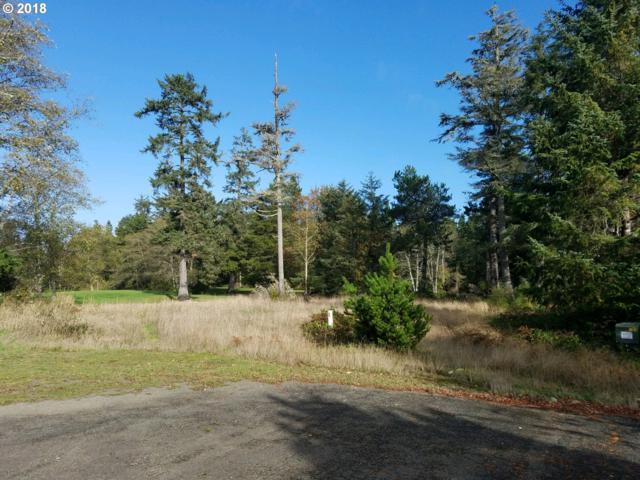 1507 314TH Pl, Ocean Park, WA 98640 (MLS #18325106) :: The Sadle Home Selling Team