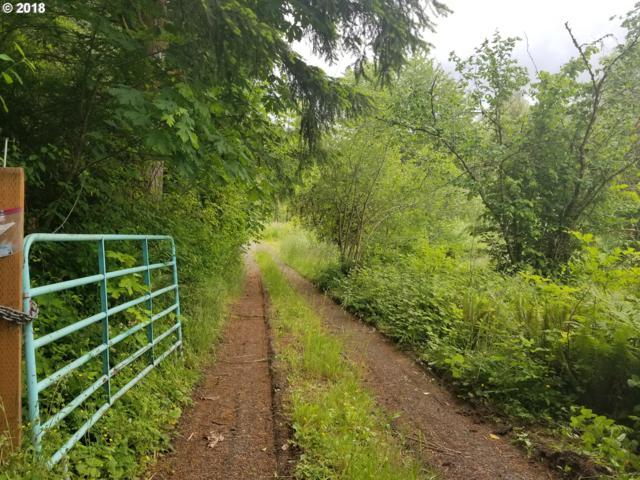 73487 Beaver Springs Rd, Rainier, OR 97048 (MLS #18327505) :: Fox Real Estate Group