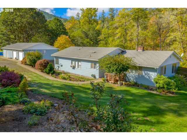 8996 Hayhurst Rd, Yoncalla, OR 97499 (MLS #18329840) :: Harpole Homes Oregon