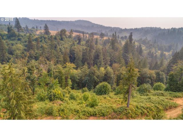 3232 Canyon Creek-Block 2 Rd Lot 4, Washougal, WA 98671 (MLS #18342561) :: The Dale Chumbley Group