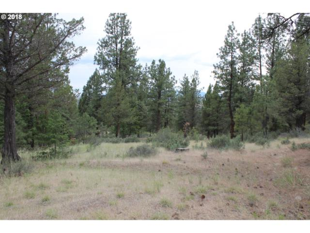 Pineview Rd, Canyon City, OR 97820 (MLS #18347613) :: Portland Lifestyle Team